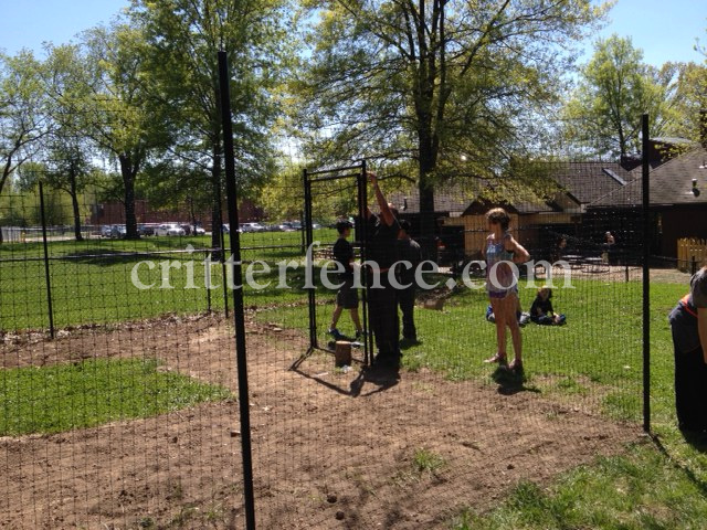 These Students, With Help, Constructed A Garden Fence 7.5ft Tall X 150 Feet  Long And A 4 Foot Wide Access Gate. The Fence Material In This Kit Consists  Of ...
