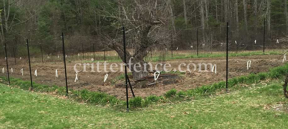 Superieur A Nice Example Of A 7 1/2 Foot Tall By 300 Foot Fence With A Few  Modifications. Includes Critterfence 700 Poly Fence Mesh, 3ft Of Steel Web  Rodent Barrier ...