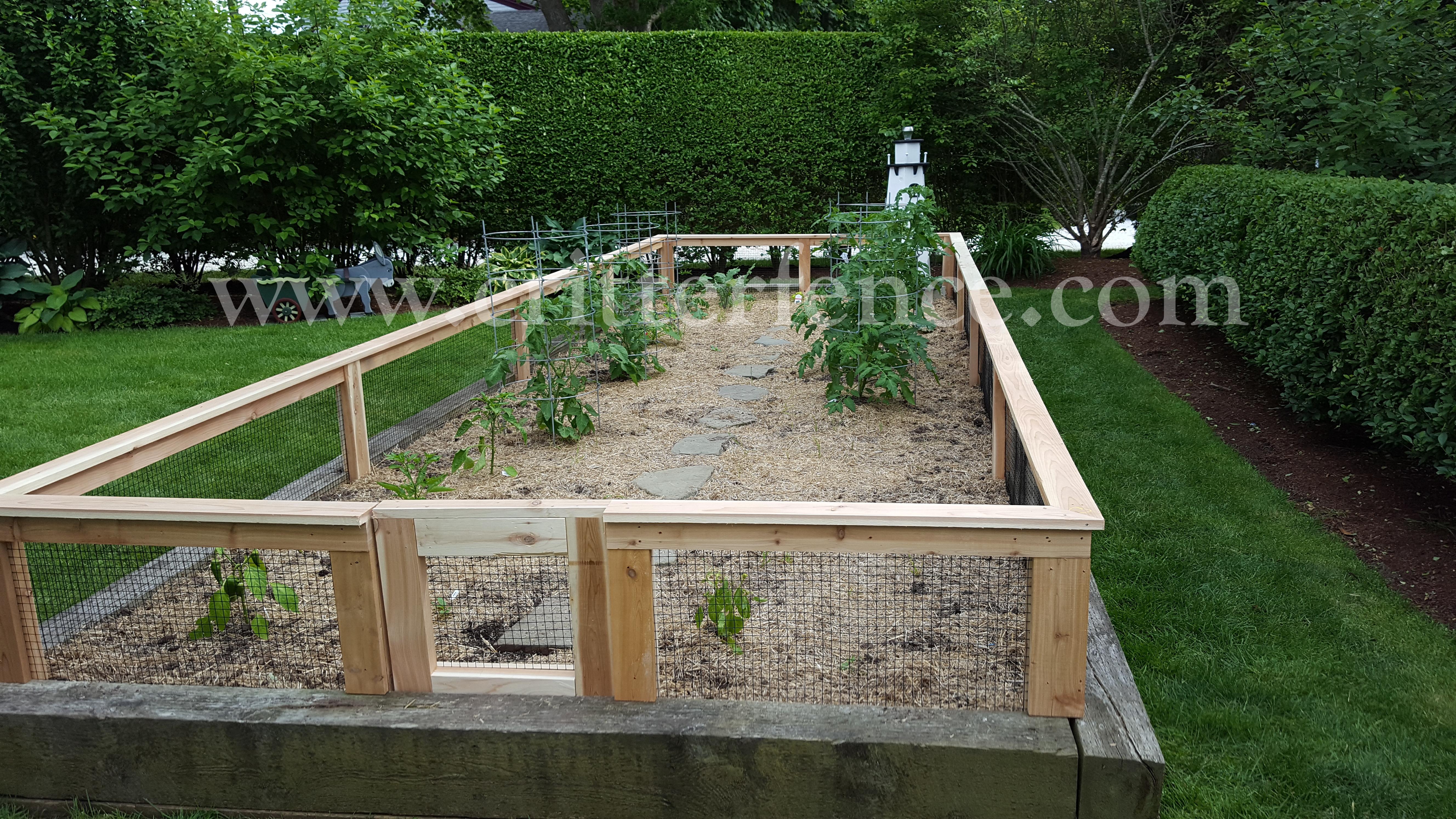 Rabbit Fence Chatham Ma