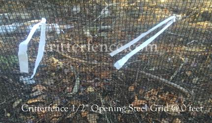 "critterfence 1/2"" opening steel grid garden fence diy"
