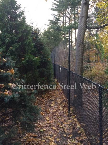 Metal deer fences, critterfence steel web