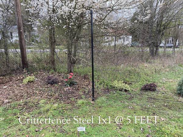 Critterfence Black Steel 1 Inch Square Grid 2 x 100 -